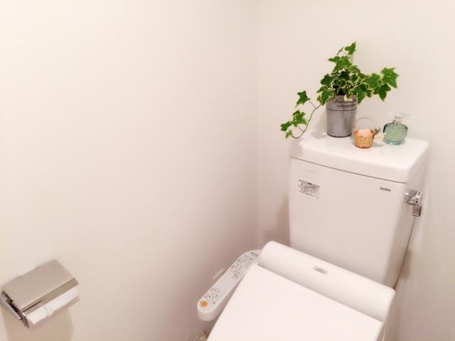 トイレマットは風水的に必要不可欠だった?トイレマット以外にも落とし穴が!